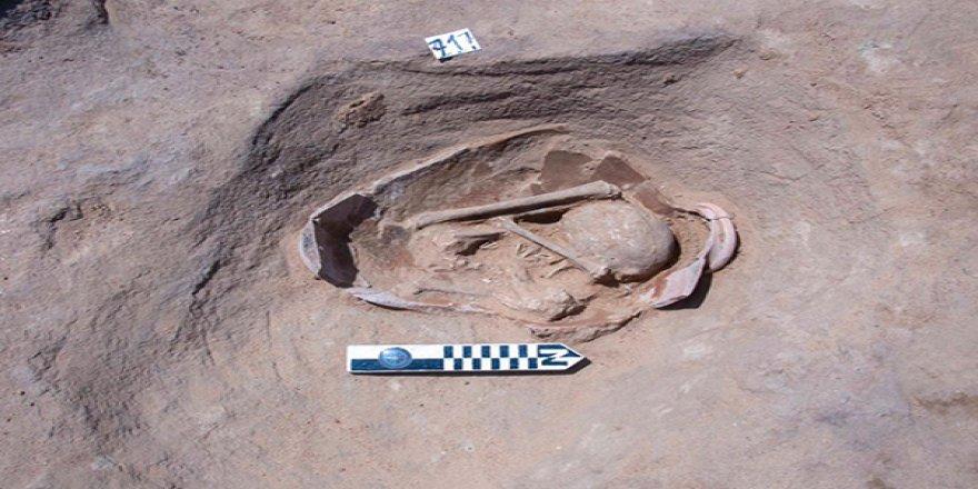 Mısır'da 83 antik mezar bulundu