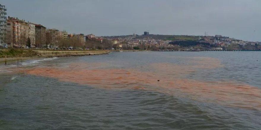 Marmara Denizi'nde korkutan görüntü!